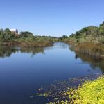 Our river matters