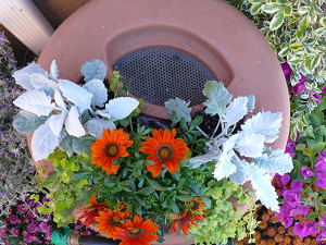 A rain barrel can be disguised as a planter, too.