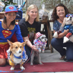 PAWmicon makes pet adopters into superheroes
