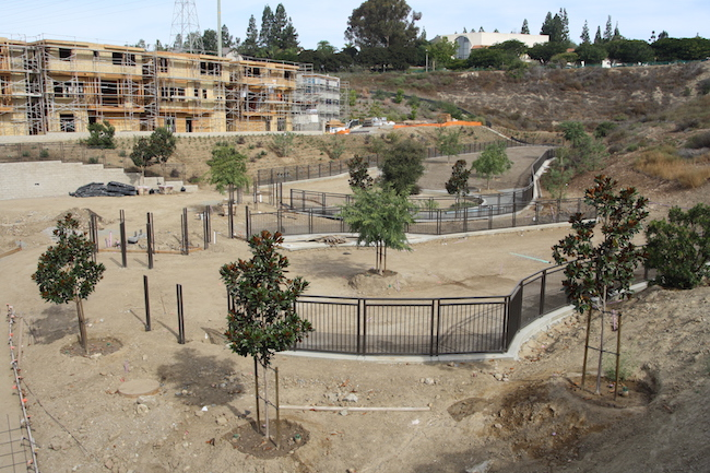 The Civita dog park will be open as early as November. (Photo by Jeff Clemetson)