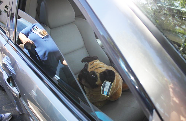 Animal control officer trainees were put to the test dealing with a mock 'hot dog in a car' scenario (Courtesy of San Diego Humane Society)