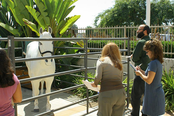 Trainees investigate an 'emaciated horse.' (Courtesy of San Diego Humane Society)